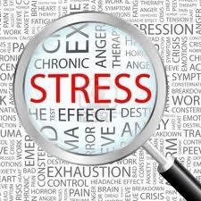 ダイエット失敗して痛感したのが、一番難しいのはストレスコントロールってこと
