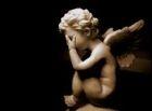 専門家 「天使は実在するけれど、羽根がない」