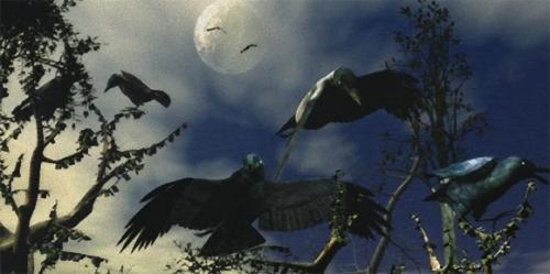 カラスは別格。カラスの脳は鳥頭ではない。その知能の高さは平行進化にあり(ドイツ研究)