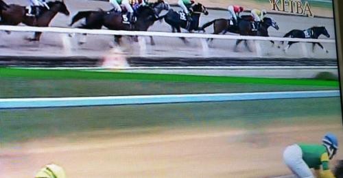 【画像】スタート直後に騎手が落馬した結果wwww