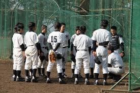 野球部ってあまりプロ野球見てないよな