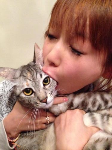 【悲報】 中川翔子さん 2014年初の猫食い (画像あり)
