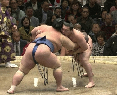 【速報】大相撲でまたヤバイ相撲 これは明らかにアレだろwwwwwwwwwwwwww