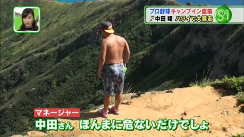 【野球】中田翔、ハワイの崖で謎のファイティングポーズ