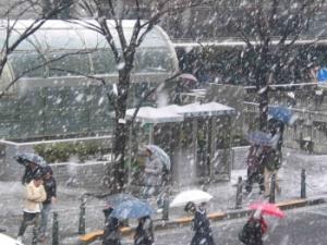 【速報】社畜死亡 明日朝6時からずっと雪