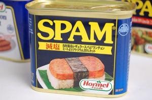 スパムとかいう謎の肉wwwwwwww
