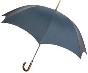 雨の日傘使う奴なんなの?体に触れる直前で蒸発させればいいじゃん