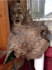 スズメバチが木の人形に巣を作った結果wwwwwwwwwwww