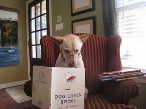 読書家の犬たち…邪魔しないようにこっそりのぞいてみませんか?