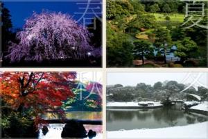 日本って完全に四季無くなって来たよな
