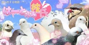 【世界よ、これが日本だ】鳥と恋愛する乙女ゲー『はーとふる彼氏』が世界最大級のゲームイベント「E3」に出展決定wwwwwww
